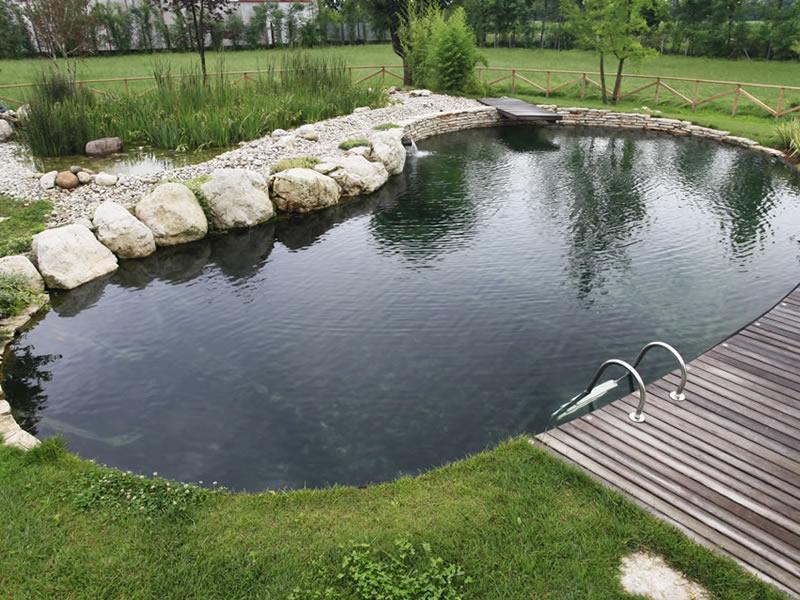 Progettazione e realizzazione di un biolago balneabile in for Animali laghetto