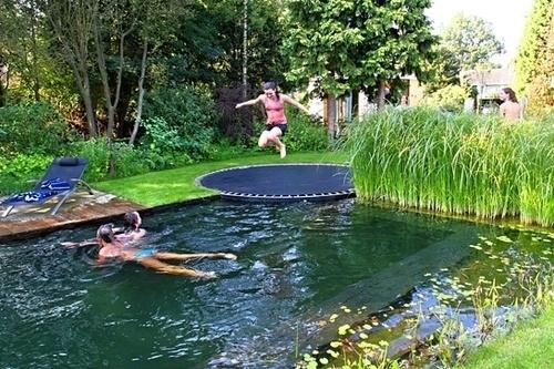 Articoli biopiscine ecolaghi e piscine naturali - Biopiscina fai da te ...